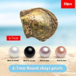 50PC Akoya Oysters with Pearls Wholesale Saltwater Akoya Oysters Bulk Mixed Colors 6-7mm Round Pearl