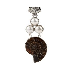 Unique Natural Ammonite Fossil Stone Gemstone and Pearl Charms Pendant with Copper Bails