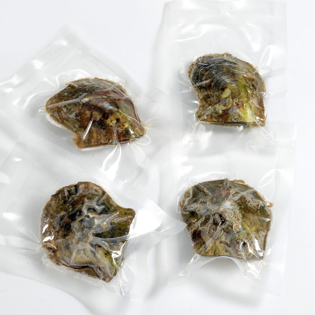 Vacuum Bulk Pearl Oysters